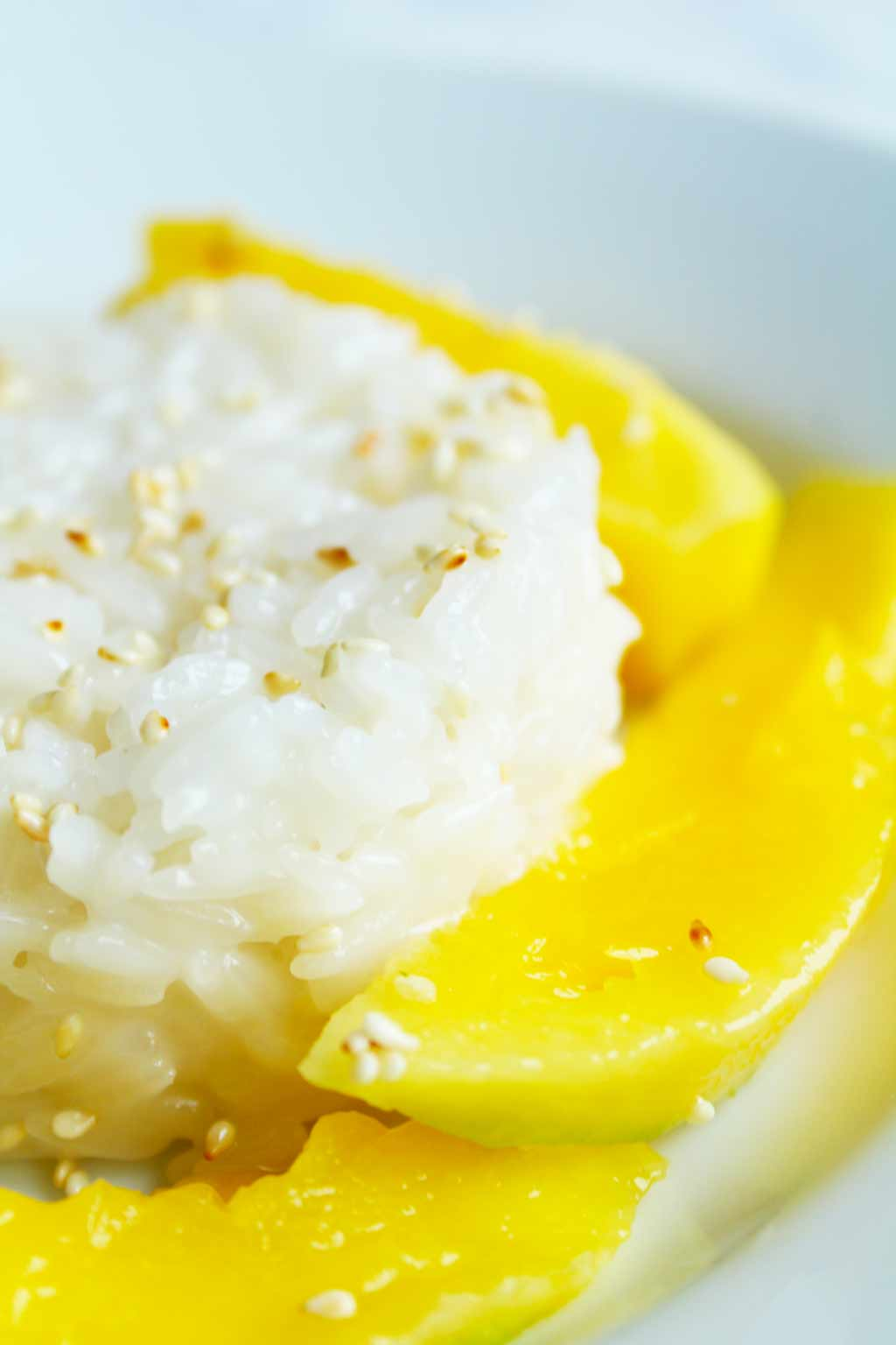thai mango sticky rice close up