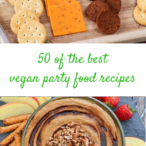 Vegan party food recipes