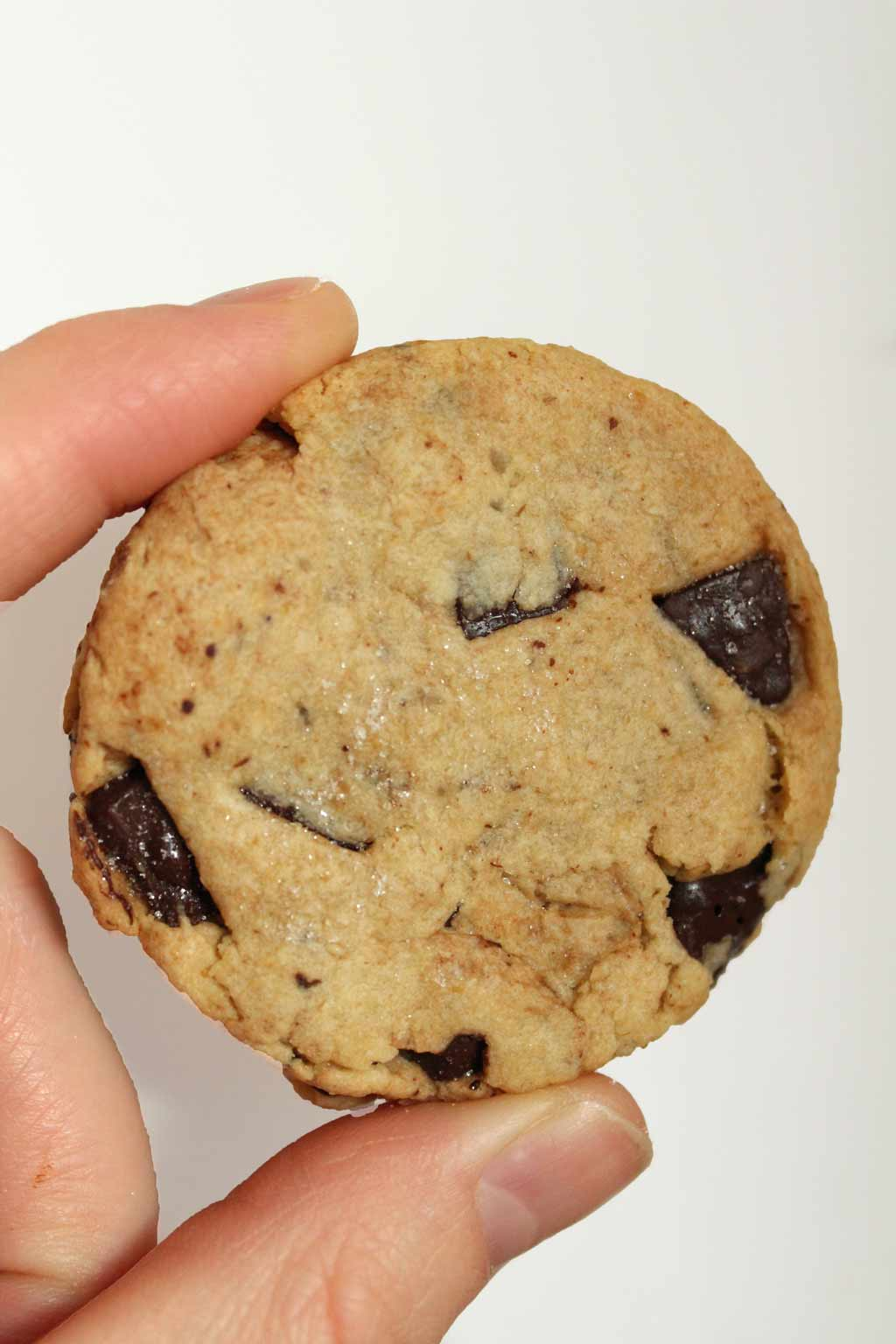 Hand holding shortbread cookie