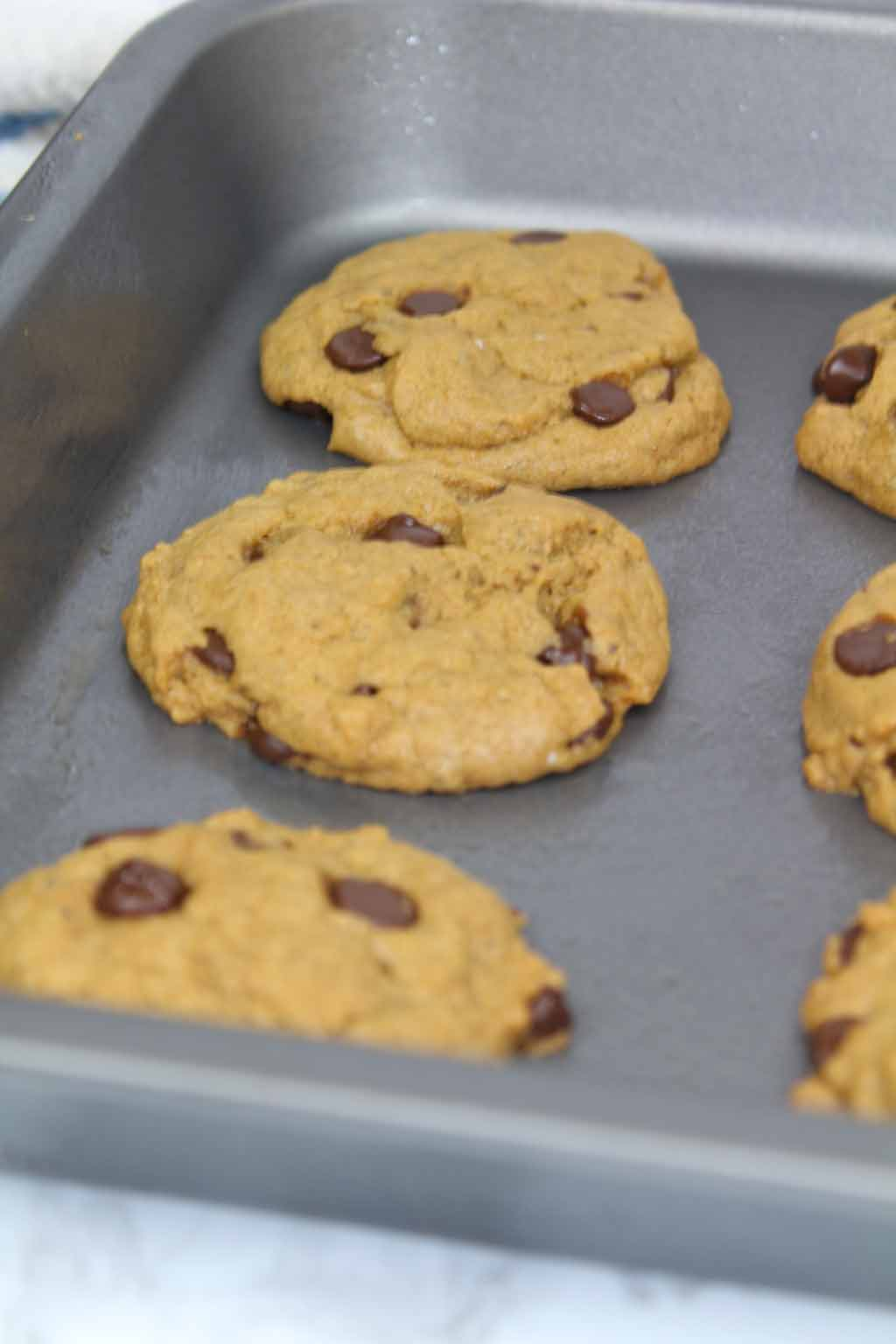 cookies on tray after baking
