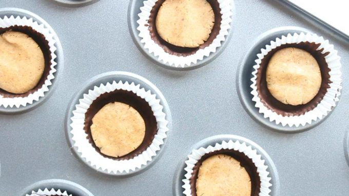 chocolate cups with a disc of peanut butter filling in each