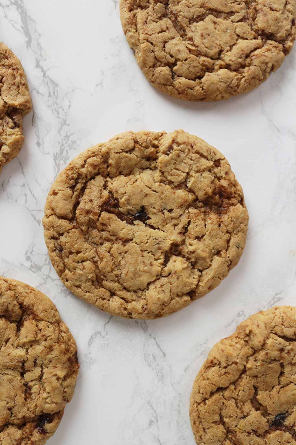 ginger Cookies Laying Flat On A White Background