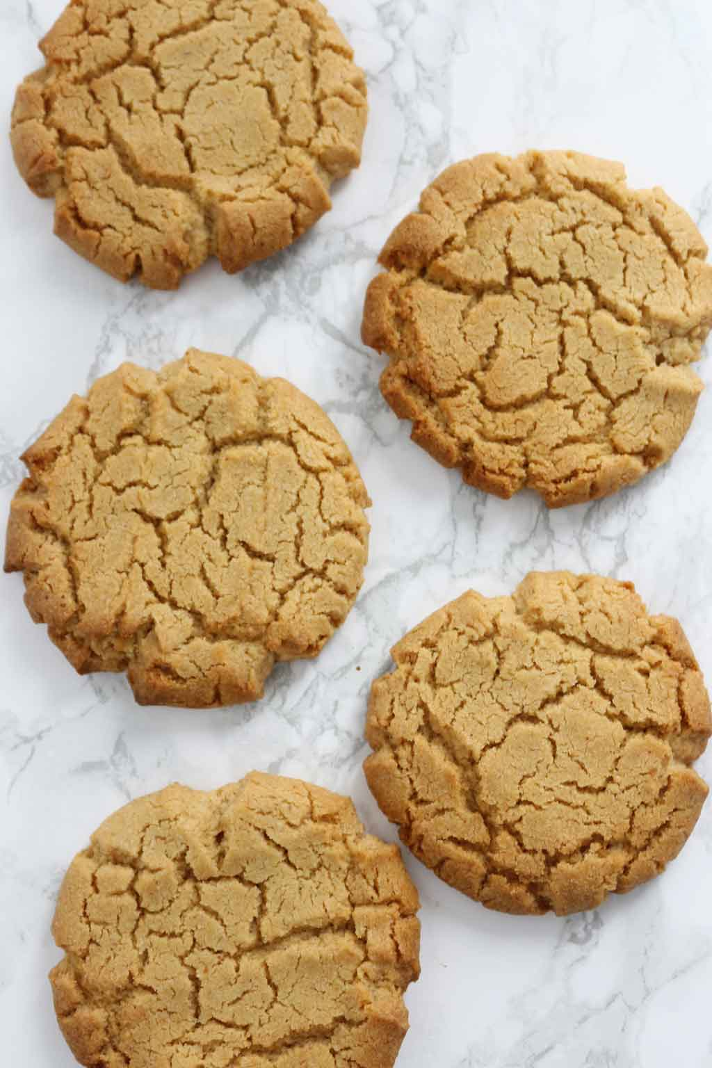 Vegan Peanut Butter Cookies laying flat on a white surface